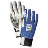 Hestra Ergo Grip Windstopper Race - 5 finger Royal Blue (250)